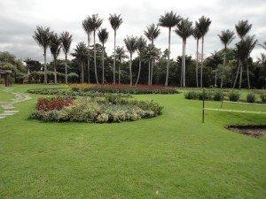 jardinbotanico-300x225